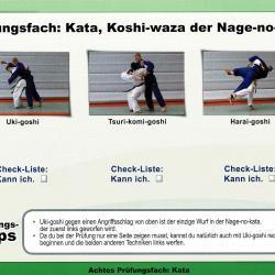 Kyu-Prüfungsanforderungen der Nage-no-kata beim Kyu-Prüfer Lizenzlehrgang